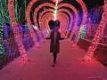 灯光展厂家资源制作租售 暮色下光彩夺目,视觉盛宴