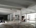 黄圃马新工业区 一楼1900平米厂房招租