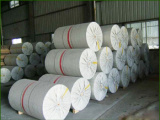 畅销文化印刷用纸生产厂家推荐,热敏原纸价格