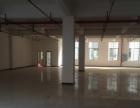 绿汀大道华美嘉工业园区 厂房 2380平米