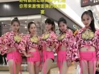 福州乐队歌手、魔术表演、小丑舞蹈、主持礼仪模特等