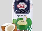 泰国进口 ICECOOL椰子水饮料