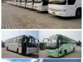 乐清带司机包车 轿车 商务车陆通租车服务公司