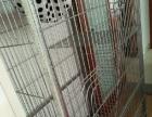 自用猫别墅猫笼转让