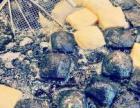吉林省内长沙臭豆腐胚子批发