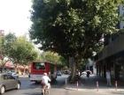 美甲商铺招租,瑞金二路沿街商铺,环境好,位置优。