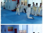 新区邓尉路塔园路附近金益晨少年派跆拳道培训学习
