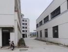 江北新区出租浦口桥林商圈石桥工业园全新厂房