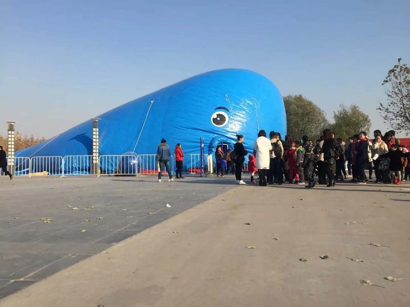 北京U型闯关出租充气闯关出租陆地闯关出租租赁