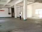 黄圃会展中心 700平方一楼标准厂房 形象好