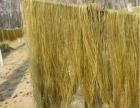 爱粉说中国粉条产业网厂家供应杂粮粉条
