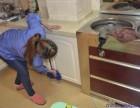 家庭,楼盘开荒保洁