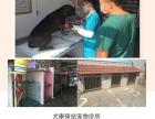 昔阳县犬康驿站宠物医院