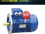 电动机-小电机供应