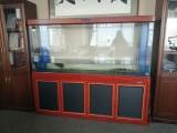 大型鱼缸200X160X46