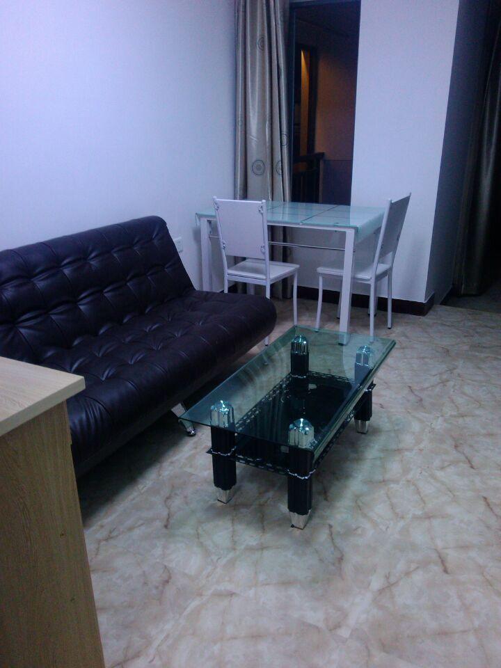 宝龙广场旁新房精装设齐朝南看江居家单身公寓福机新苑