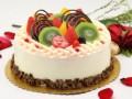 郑州甜品 AILI蛋糕店加盟费蛋糕甜点甜品加盟店