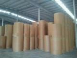 金福兴纸业-白板纸