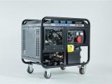 欧洲狮300A柴油发电电焊机德国动力