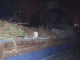小区渣土清运 店铺装修垃圾清运 办公楼垃圾清运