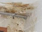 修平房、楼房、天沟、阳台、卫生间、水池漏水防水
