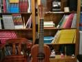 山师附近尤克里里口琴学习