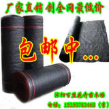 厂家直销 6针黑色遮阳网 防晒网 pe网 遮阳率是95% 塑料网 农用