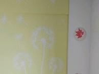 美菱木业墙艺装修各种内墙