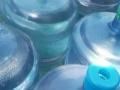 纯净水15张水票