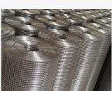 买镀锌电焊网上哪买好 优质的电焊网
