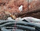 淄博各种废电缆辛苦回收废旧电缆专业回收价格