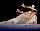 济南市中区槐荫区民族古典舞,傣族,维族等舞蹈培训