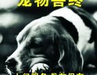 从一宠物善终服务 广州宠物火化 宠物殡葬价格面议
