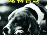廣州狗狗死了怎么處理 貓咪死了怎么處理 從一寵物火化