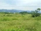 江谷镇 土地 33000平米