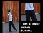 少儿舞蹈推荐课程: 巧学空翻技巧 VIP少儿舞蹈教材