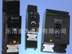 温州柳市厂家出口高分断断路器 非洲漏电断