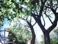太原纽约婚纱摄影 2388 团购