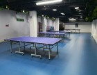 石景山乒乓球场馆 培训