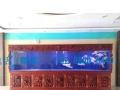 生态鱼缸,免换水鱼缸,超强过滤鱼缸,大型家用鱼缸,办公室鱼缸
