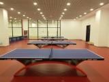 比賽乒乓球地膠價格 乒乓球場地地膠