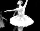 珠海红河谷舞蹈 成人精品课程推介-芭蕾形体,火热招生啦