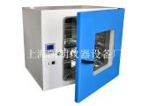 台式DHG-9245A 300度电热恒温鼓风干燥箱 烘箱