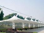 张拉膜景观收费站出入口膜结构自行车汽车停车棚遮阳棚