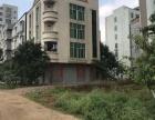 遂溪城内市场后面整栋楼房 户型方正地段超靓 附近靠