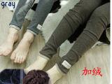爆款2011韩国原单 小猫图案 加厚冬季 加绒打底裤 升级6色