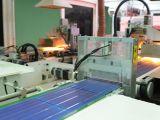 中晶能源专业从事浙江光伏能源加盟口碑等产品生产及研发