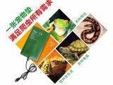 宠物垫-广东爬宠加热垫批发与贴牌