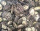 磐安山区农家土货绿色环保有机农产品出售加工代理