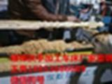 多功能数控木工车床,旭东数控木工车床